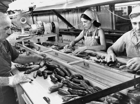 מפעל הזיתיה ההיסטורי