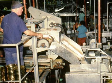 מפעל הזיתיה הקיים