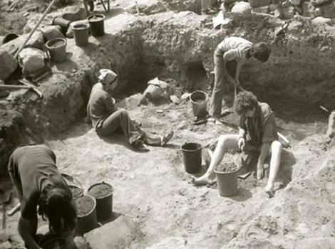 ארכיאולוגיה בבית השיטה
